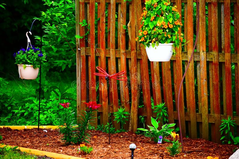 Dragon Fly Garden. Mystical dragon fly garden with rustic look stock images