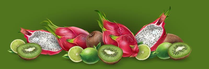 Dragon fruit and kiwi royalty free illustration