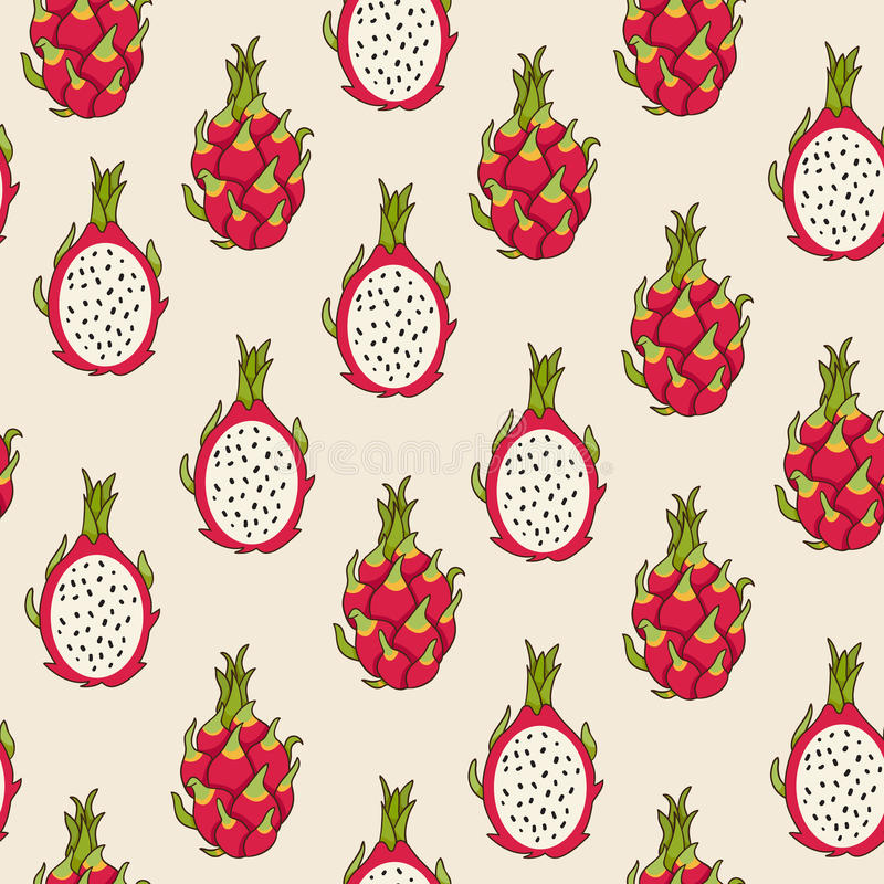 Dragon fruit pattern. Vector Illustration. Exotic fruit. Hand-drawn style royalty free illustration
