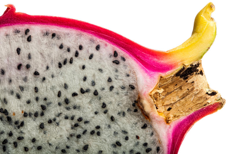 Dragon fruit, Pitahaya slice on white background. Hylocereus undatus (White-fleshed Pitahaya) is a species of Cactaceae and is the most cultivated species in royalty free stock image