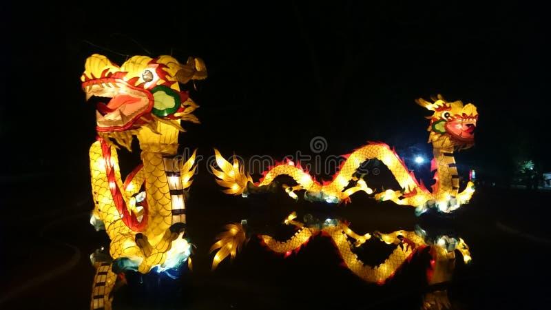 Dragon Handmade Chinese Lantern fotos de archivo libres de regalías