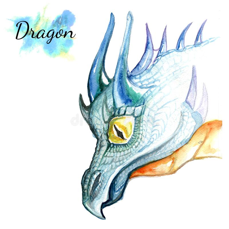 Dragon head watercolor drawing isolated on white background. Dragon head watercolor drawing isolated on white background stock illustration