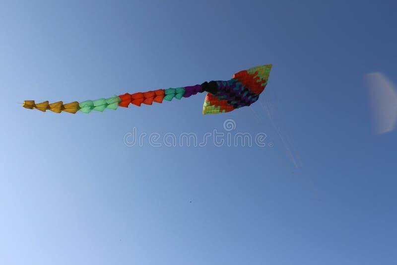 Dragon Kite imagem de stock