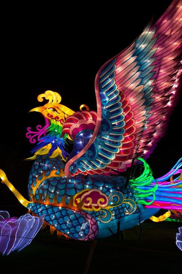 Dragon Lights Albuquerque, lanterna di seta di Phoenix L'arte tradizionale cinese celebra il nuovo anno cinese fotografie stock libere da diritti