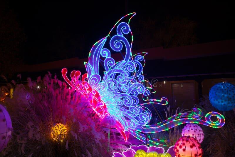 Dragon Lights Albuquerque, linterna de seda de la mariposa El arte tradicional chino celebra el Año Nuevo chino imagenes de archivo
