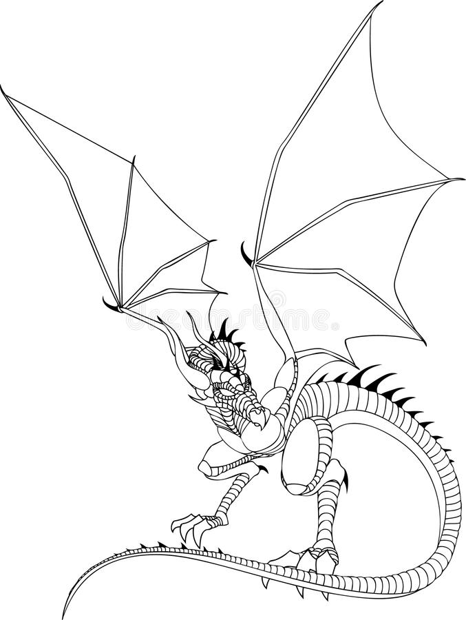 Line Drawing Dragon Tattoo : Dragon line drawing stock illustration of