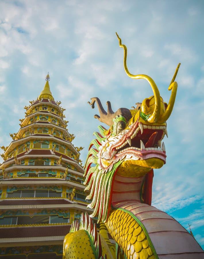 Dragon Statue med pagoden av Wat Huay plommonkang Chiang Rai, Thaila arkivfoto