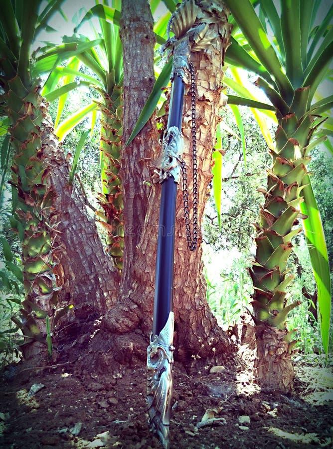Dragon sword stock images