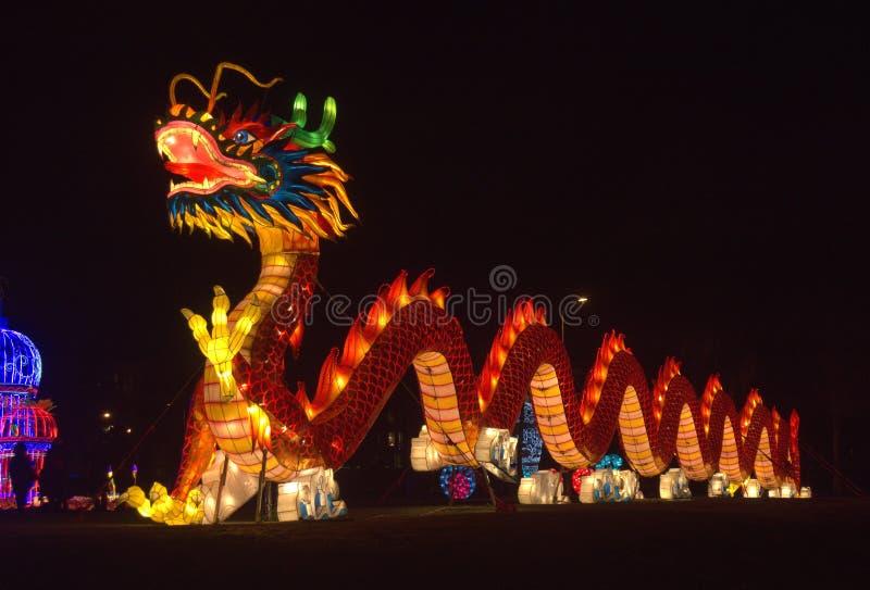 Dragone delle Lanterne Cinesi fotografia stock