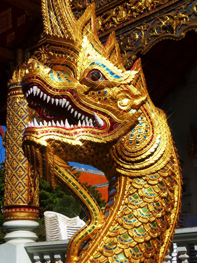 Dragoner in Chiang Mai stockfoto