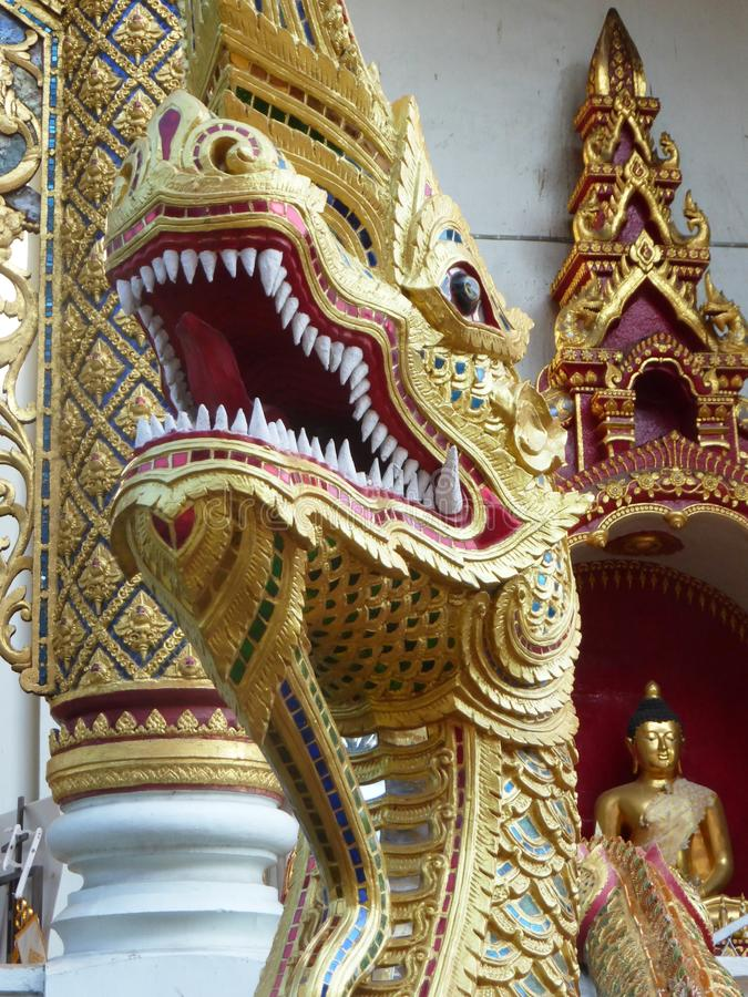Dragoner in Chiang Mai/in Thailand stockbilder