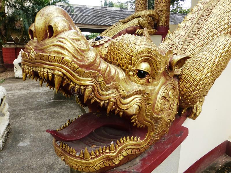 Dragoner in Chiang Saeng stockbild