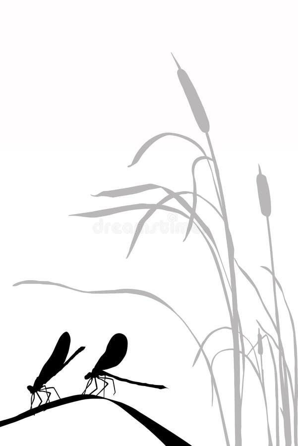 dragonflies silhouette wektor dwa ilustracja wektor