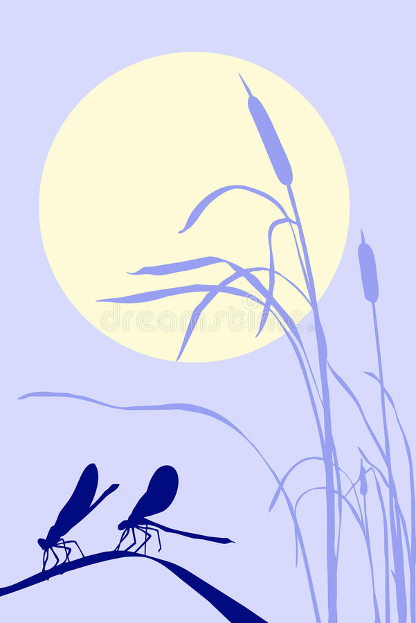 dragonflies zielarscy royalty ilustracja