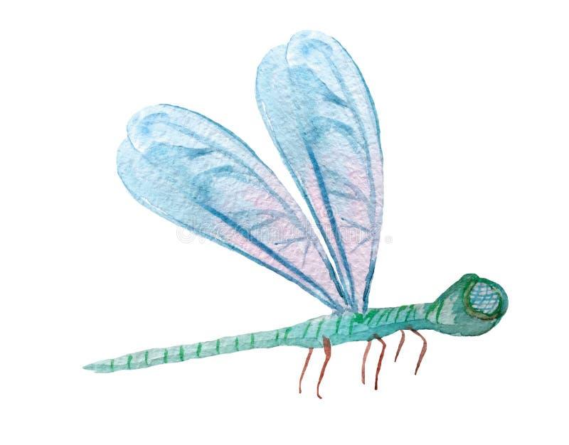 Dragonfly на белой предпосылке иллюстрация штока