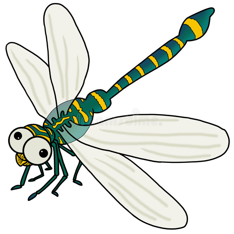 Download Dragonfly stock illustration. Image of dragonfly, animal - 27174867