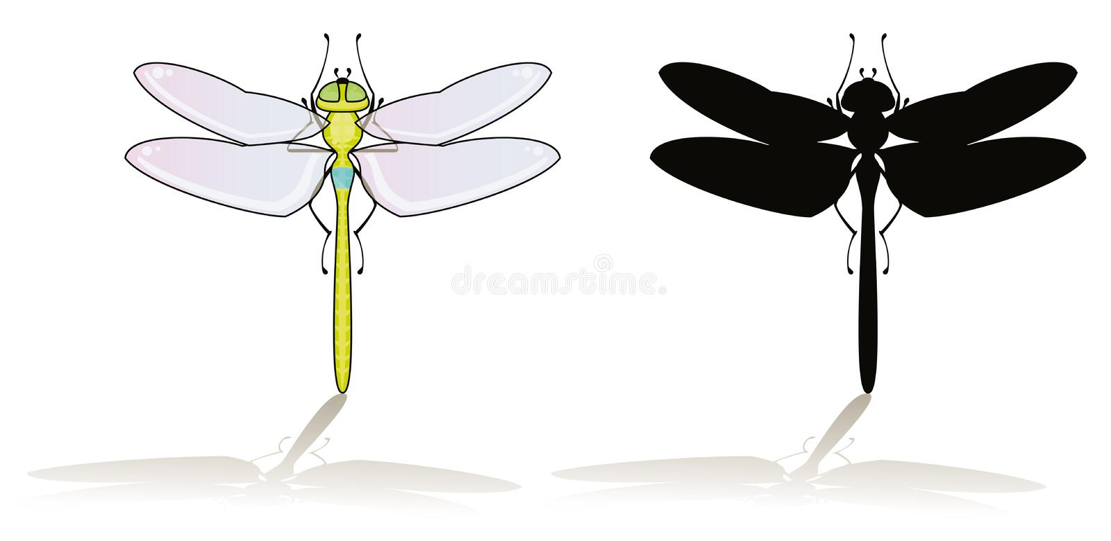 Download Dragonfly stock vector. Image of nature, vector, dragonfly - 6501846