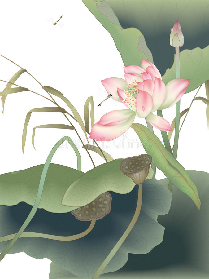 Download Dragonfly And Beautiful Water Lily With Green Leaf Stock Vector - Image: 20109311