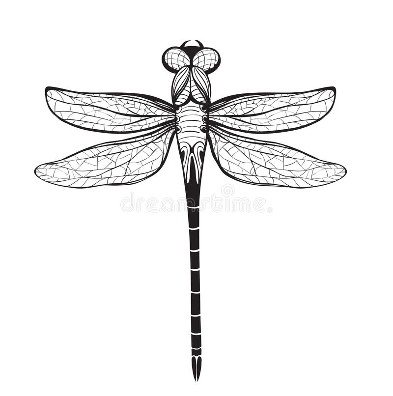 Line Drawing Insects : Dragonfly insect black inky drawing stock vector