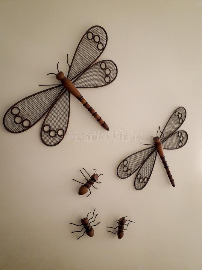 Dragonfly obwieszenie na białej ścianie hotel w Brazylia obraz stock