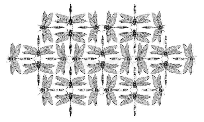 Dragonflys imagem de stock royalty free