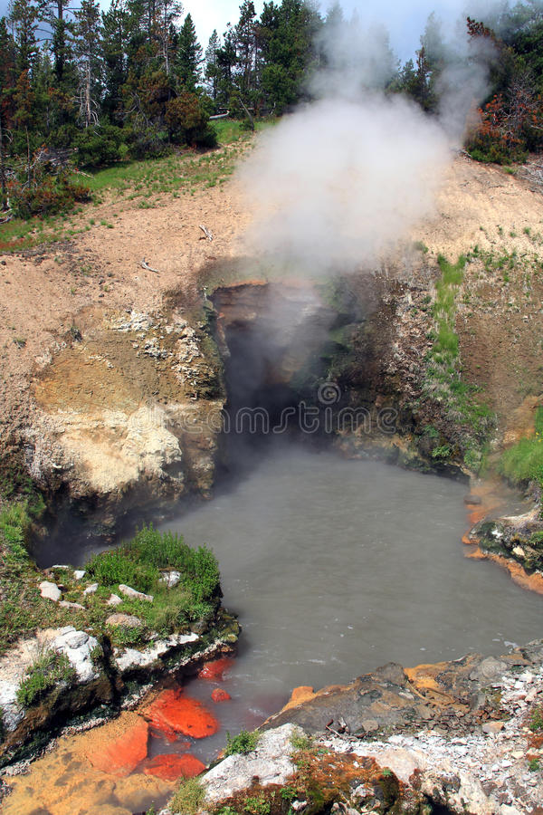 Dragons Mouth Spring - Yellowstone national park. Dragon mounth spring in yellowstone national park stock photos