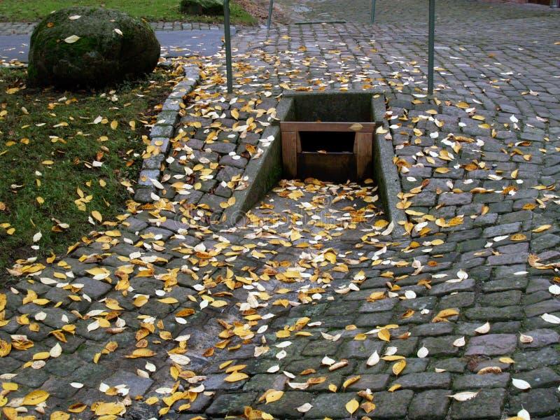 Download Drain arkivfoto. Bild av leafs, golv, guld, granit, avfalls - 988214