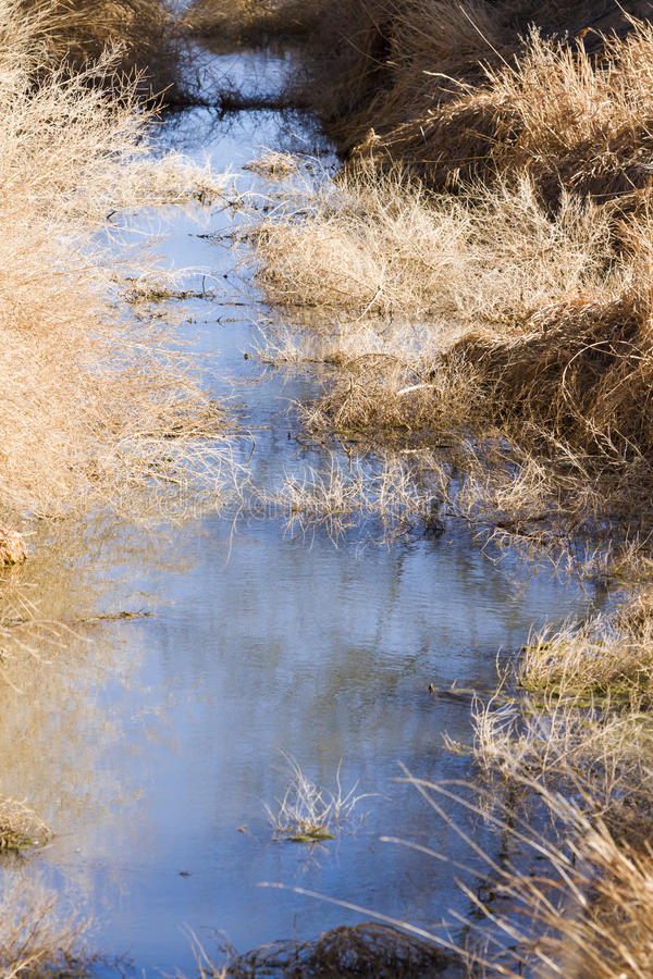 Drainage ditch. Without water. grass royalty free stock images