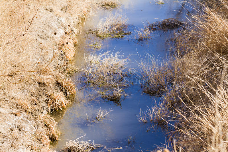 Drainage ditch. Without water. grass stock photo