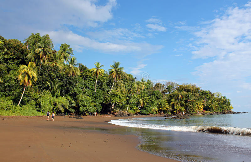 Drake Bay, imagem de stock royalty free