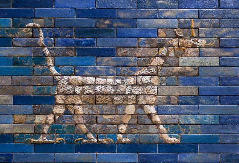 Drake från den Ishtar porten av Babylon som F. KR. konstrueras i omkring 575 arkivbilder