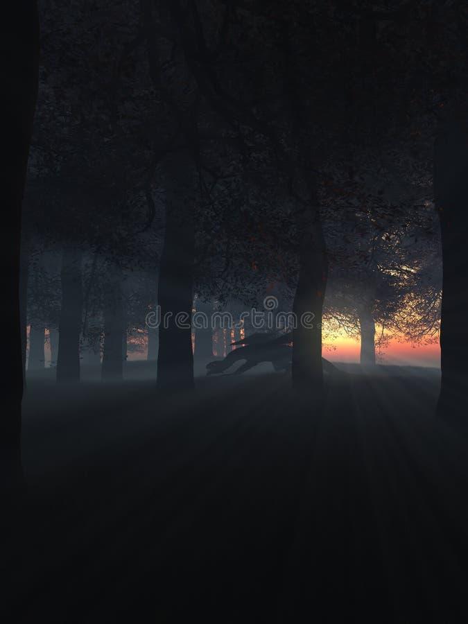 Drake i en Misty Sunset Forest royaltyfri illustrationer