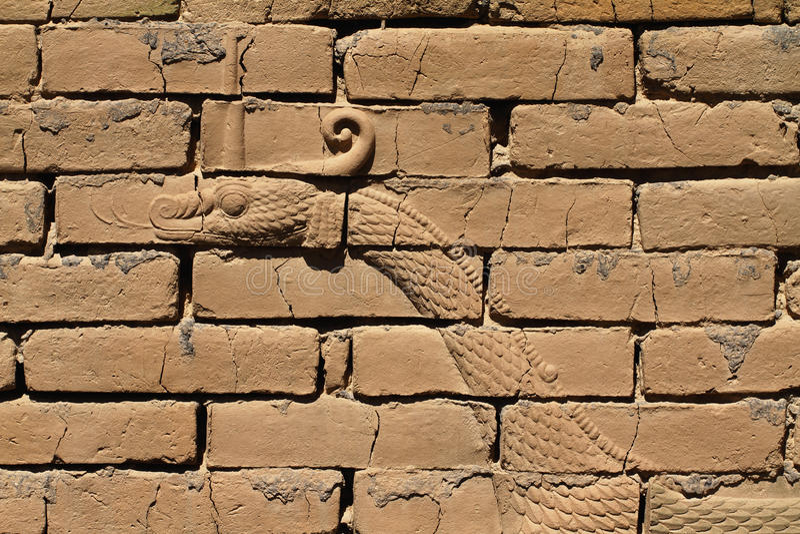 Drakebasrelief, Ishtar port, Babylon royaltyfri foto