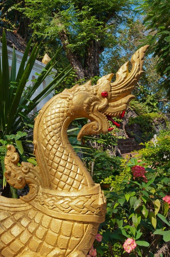 Drakehuvud på monteringen Phou Si. Luang Prabang. Laos royaltyfri fotografi