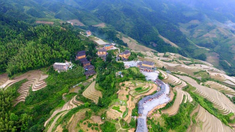 Drakes tillbaka Guangxi Kina arkivbilder