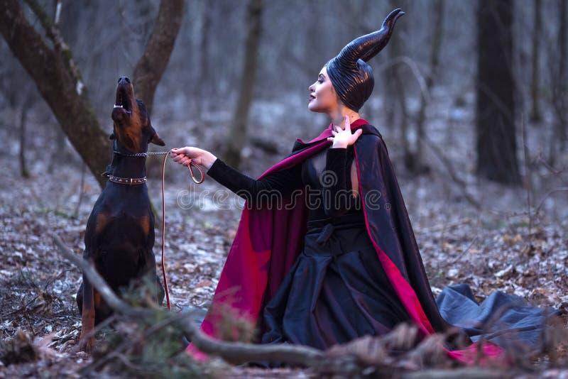 Drama do traje Fêmea Maleficent encantador e misteriosa com o cão bem educado irritado na trela Levantamento junto na floresta  imagens de stock