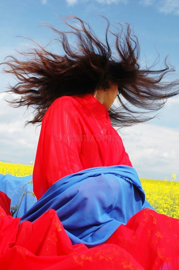 Download Dramat natury zdjęcie stock. Obraz złożonej z łąka, czerwień - 126390