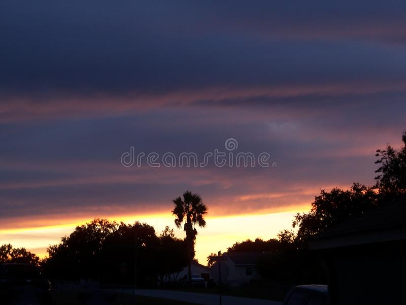 Dramatic bruise colored clouds of a Florida sunset. Dramatic bruise colored clouds and a palm tree look ominous in the Florida sunset royalty free stock photos