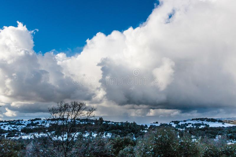 Dramatic cloud filled sky on a cold winter day with snow covered hills in background, coast live oaks and tall bare black oak in f stock image