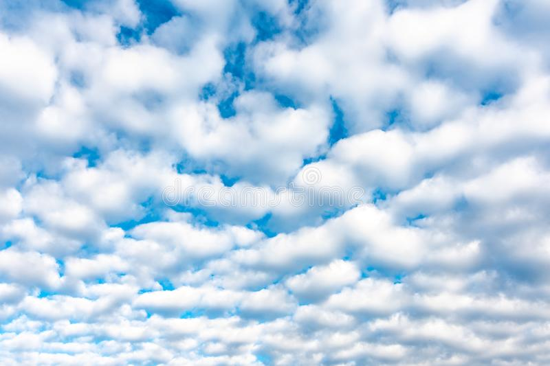 Dramatic cloud texture. White clouds placed on blue sky background. Nice cloudscape after sunrise. Summer weather.  royalty free stock photography