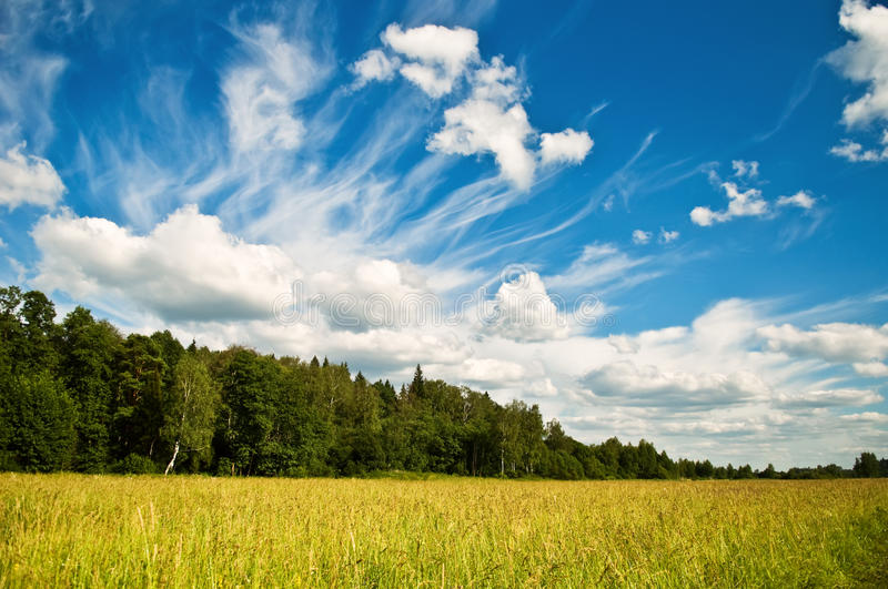 Dramatic Cloudscape Royalty Free Stock Photo