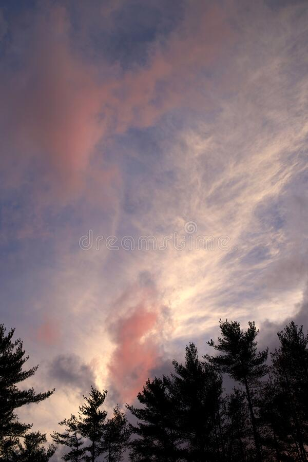 Dramatic cloudscape over trees royalty free stock photography