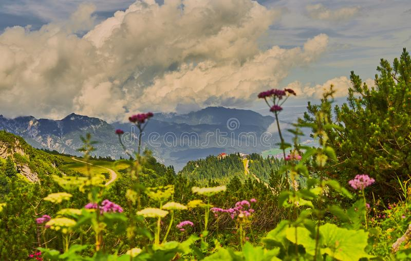 Dramatic cloudy sky over the Alps with a deliberately blurred foreground with a mountain meadow and valerian in full bloom.  stock photo