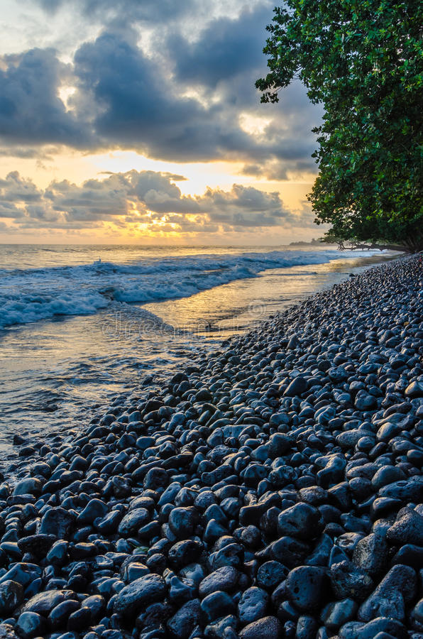 Free Dramatic Coast With Rocky Volcanic Beach, Green Tree, Waves And Amazing Sunset, Limbe, Cameroon Stock Photo - 83610850