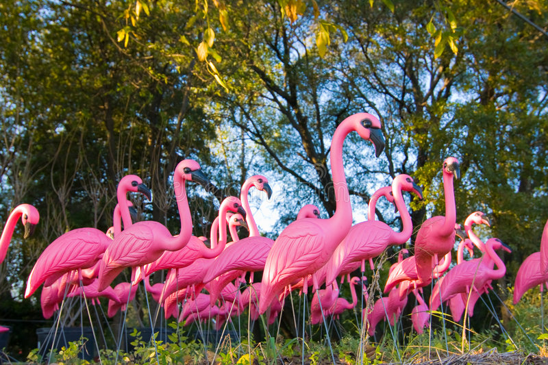 Dramatic Fake Flamingo Flock In The Forest royalty free stock photos