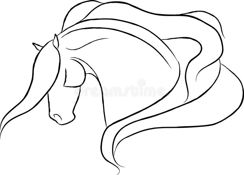 Dramatic Horse Head Vector Stock Photo