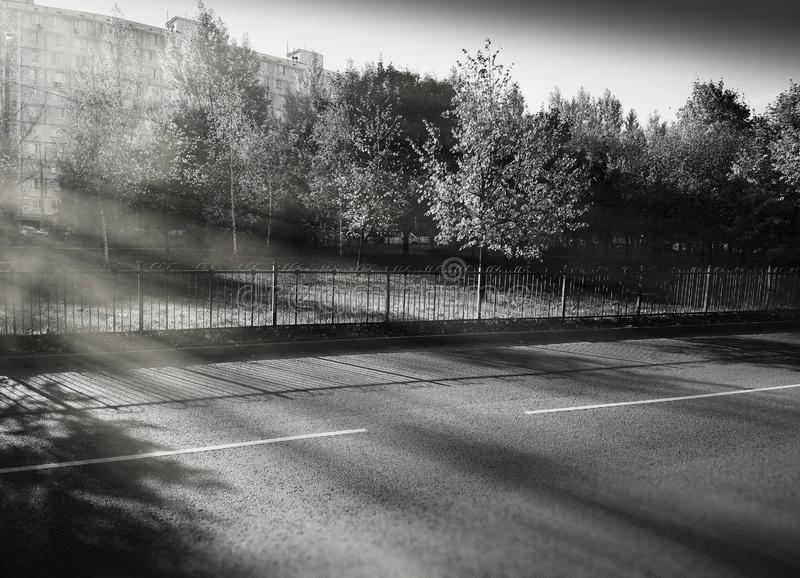 Dramatic light on empty autumn road background royalty free stock photography