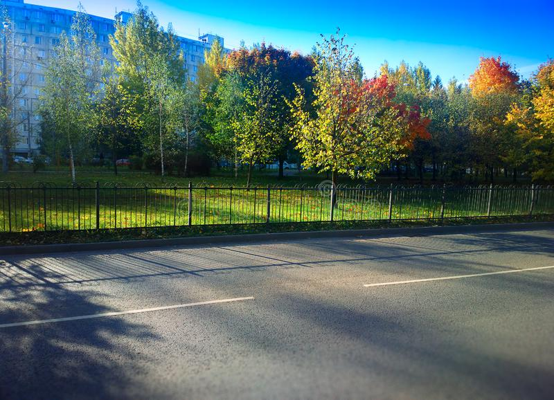 Dramatic light on empty autumn road background royalty free stock images