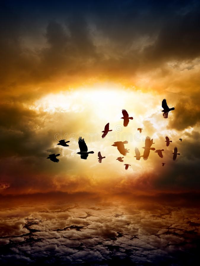 Dramatic nature background. Dramatic apocalyptic background, mayan end of world, red sunset, armageddon, hell, big explosion, flock of flying ravens, crows in royalty free stock images