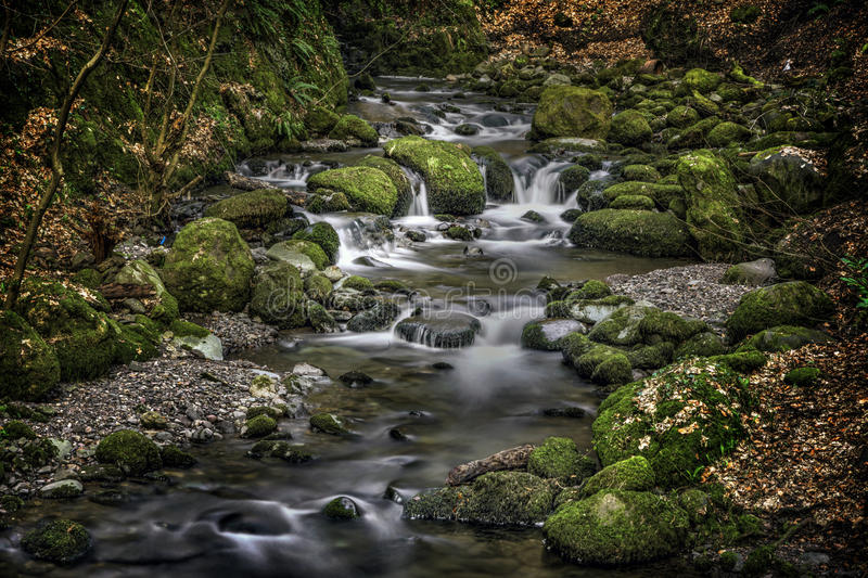 Dramatic River, Alva Glen Scotland. Shot of a dramatic River, Alva Glen Scotland royalty free stock image